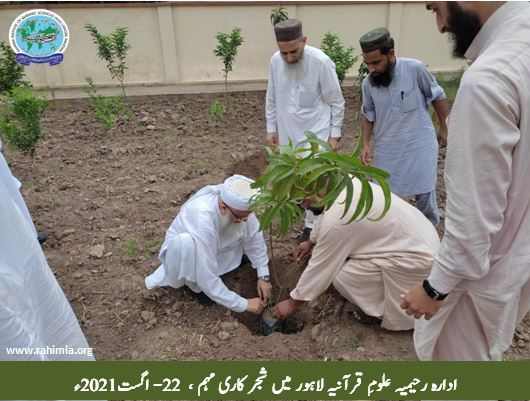 ادارہ رحیمیہ علومِ قرآنیہ لاہور میں شجر کاری مہم